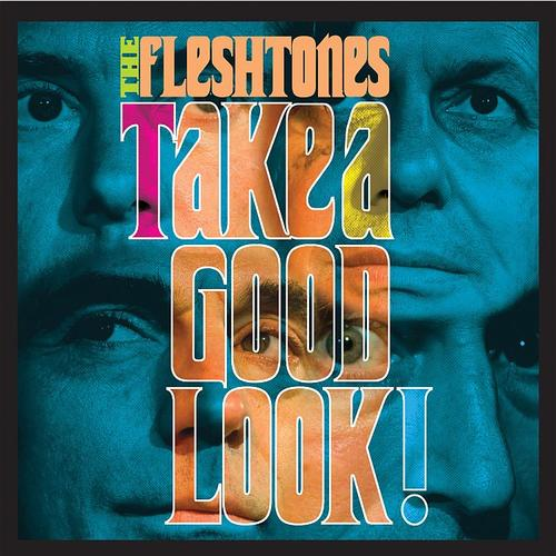 "Fleshtones - ""Take A Good Look!"""